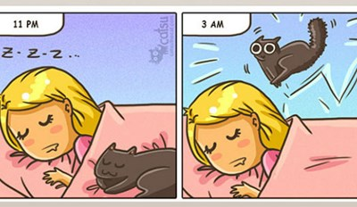 This Adorable Web Comic Perfectly Captures What It's Like to Live With a Cat