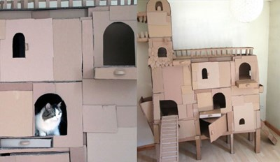 Creative Guy Makes Unique Cardboard Structures for His Cat