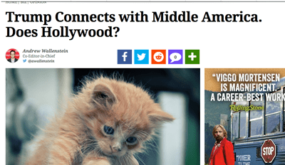 Make America Kittens Again With a New Chrome Extension That Replaces Pictures of Trump With Cats