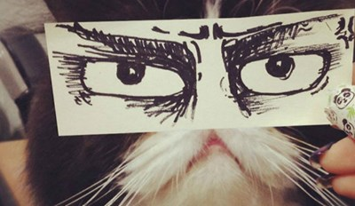 People Are Taking Hilarious Pictures of Their Cats With Expressive Cartoon Eyes