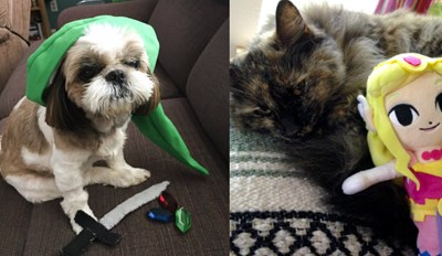 Nintendo Fans Are Celebrating Their Pets Today