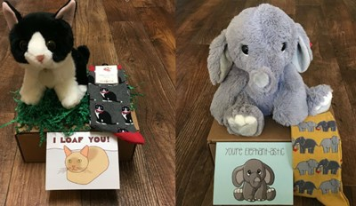 Consider Yourself Lucky If Anyone Ever Sends You One of These Adorable Care Packages