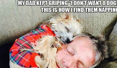 10 Dads Who Swore They Never Wanted to Adopt a Dog
