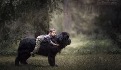 12 Gorgeous Photos of Little Kids With Their Very Big Dogs