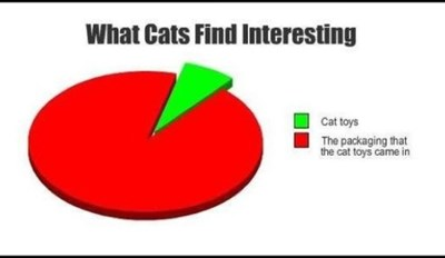 10 Funny Pie Charts About Your Cat