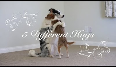 5 Different Adorable Hugs Your Pooch Can Give For Valentine's Day