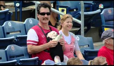 Just a Dog in a Baby Carrier Hanging With Mom and Dad at a Baseball Game
