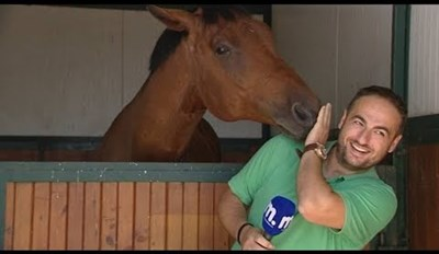 Fame-Seeking Horse Interrupts Reporter Every Time He Opens His Mouth
