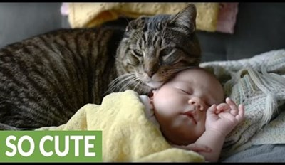 Cat Lovingly Watches Over Newborn Baby