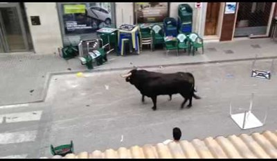 Bull Enters Spanish Bank - Maybe To Check If The Spanish Stock Market Is Bullish?