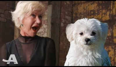 Helen Mirren's Reaction to Getting Surprised by Puppies Is All of Us
