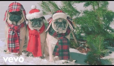"""The New She & Him """"Winter Wonderland"""" Music Video Stars a Bunch of Pugs and It's Amazing"""