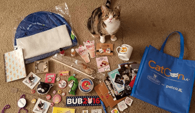 Here's What We All Missed at CatConLA 2016