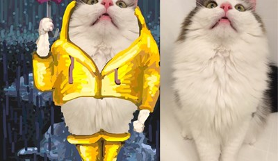Talented Snapchat Artist Makes Works of Art out of Cat Photos