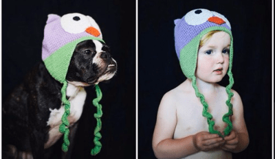 It's Dog Vs. Baby in the Ultimate Cuteness Competition