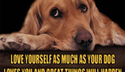 A Dog's Love is Forever