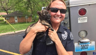 Officers Respond to Reports of a Suspicious Vehicle Only to Find a Bunch of Happy Dogs