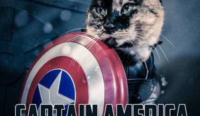 Captain Ameowrica: Civil War