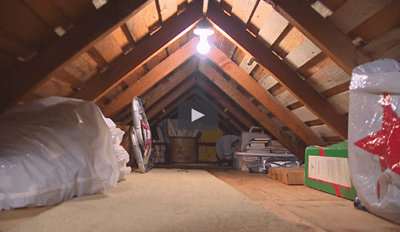 Time to Start Checking Your Attic Every 3 Days Now