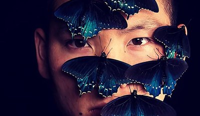 SF Man Revives A Rare butterfly Species In His Backyard