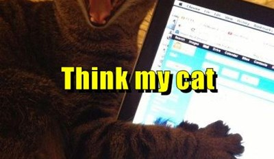Think my cat read my personal ad.