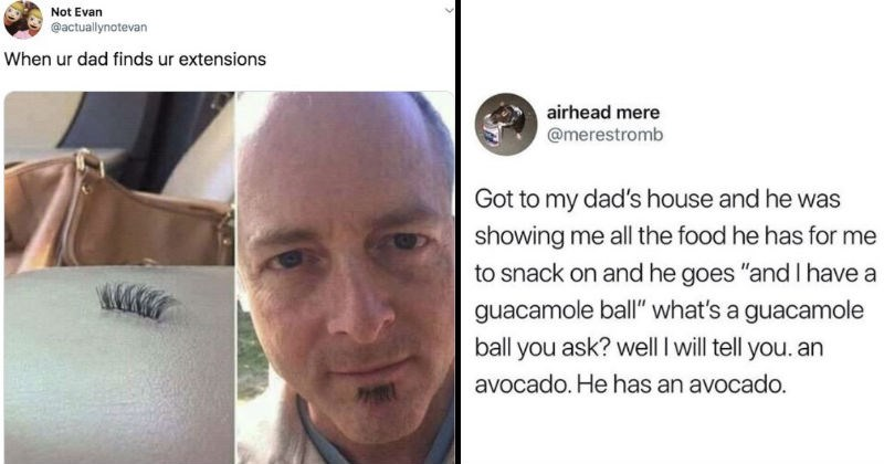 "Funny dad jokes and dad memes | Person - Not Evan @actuallynotevan ur dad finds ur extensions Twitter actuallynotevan | Animal - airhead mere @merestromb Got my dad's house and he showing all food he has snack on and he goes ""and have guacamole ball s guacamole ball ask? well will tell an avocado. He has an avocado."