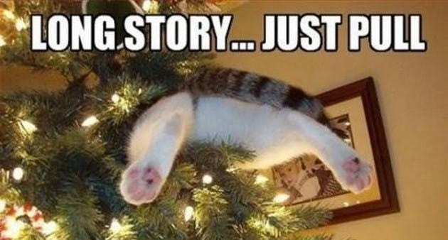 Funny christmas memes of animals getting reading for christmas   back legs of a cat peeking out of a decorated christmas tree and caption that reads long story... just pull