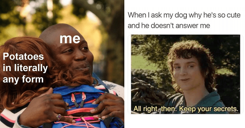 funny random memes | titus from unbreakable kimmy shmidt hugging someone while crying, the pic is labeled as me appreciating potatoes in literally any form. frodo in the hobbit movie all right keep you secrets meme about asking dogs why they're so cute and getting no response