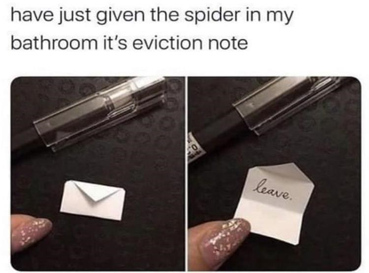 fresh and funny animal memes | pic of a tiny envelope the size of a fingernail, another pic of the envelope open to reveal a single word written on it have just given spider my bathroom 's eviction note leave.