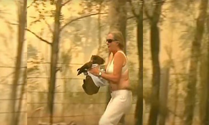 Inspiring people of 2019 who were kind to animals | woman running through a burning forest while holding a koala wrapped in her shirt