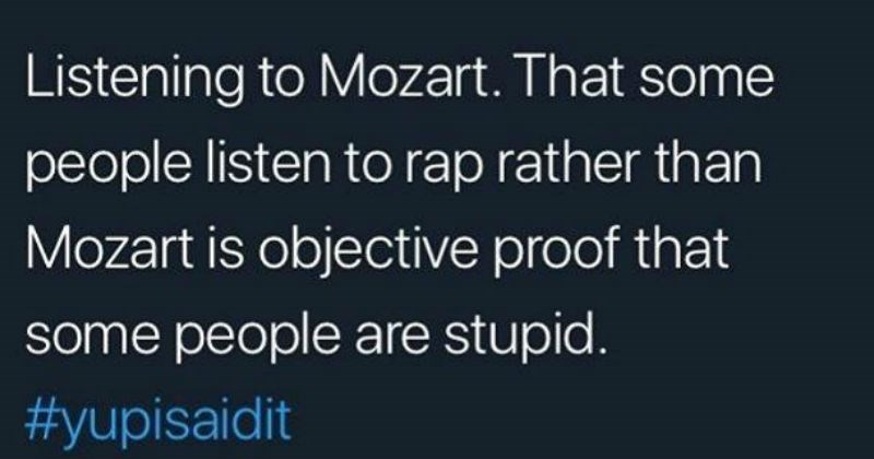 People who think they are very smart | listening Mozart some people listen rap rather than Mozart is objective proof some people are stupid yupisaidit
