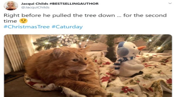 CATS destroying Christmas trees | cute orange cat sitting on a blanket under a Christmas tree with a snowman plushie tweet by JacquiChilds Right before he pulled tree down second time #ChristmasTree #Caturday