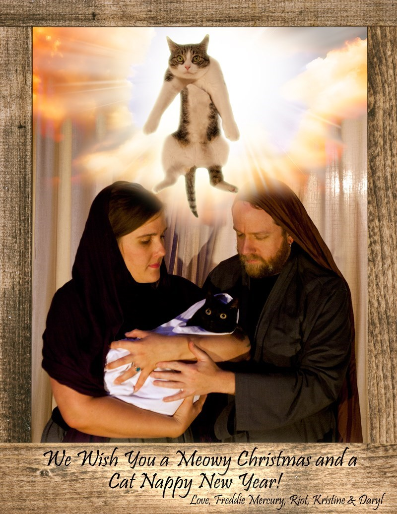 Awkward Family Photos Featuring Pets for christmas | a couple holding a black cat wrapped in a blanket like a baby in front of a heavenly backdrop with a glowing floating cat. Wish Meowy Christmas and Cat Nappy New Year! Love, Freddie Mercury, Riot, Kristine Daryl. woman holding a cat above her head while a man is drinking straight from a bottle, a Christmas tree is in the background