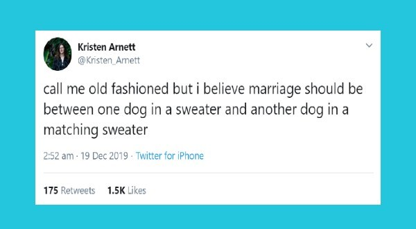 Funny animal tweets of the week | tweet by Kristen_Arnett call old fashioned but believe marriage should be between one dog sweater and another dog matching sweater