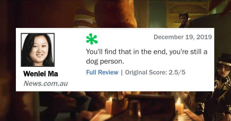 "A collection of funny one sentence reviews for the movie ""Cats."" 