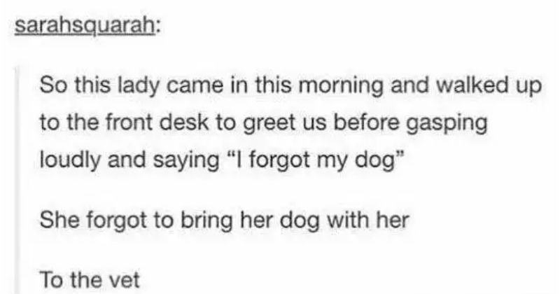 "Funny Tumblr moments | sarahsquarah: So this lady came this morning and walked up front desk greet us before gasping loudly and saying forgot my dog"" She forgot bring her dog with her vet"