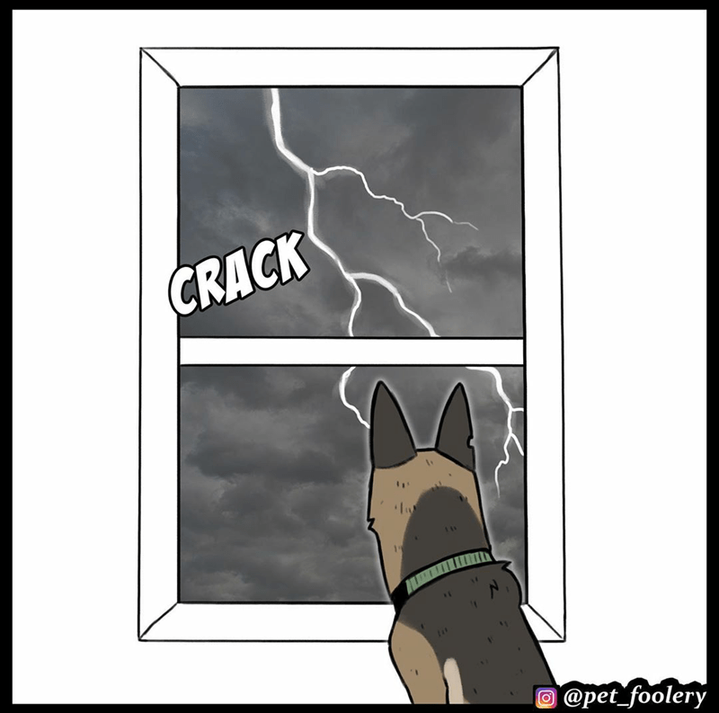pixie brutus comic pstd military kitten dog feels animals art | illustration of a German shepherd looking out of a window at a storm