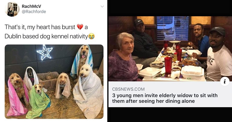 Funny and cute wholesome memes and tweets | tweet by Rachforde my heart has burst Dublin based dog kennel nativity. cute dogs wrapped up in blankets in a barn. photo of old lady and three young men at a dinner table and headline that reads 3 young men invite elderly widow sit with them after seeing her dining alone.