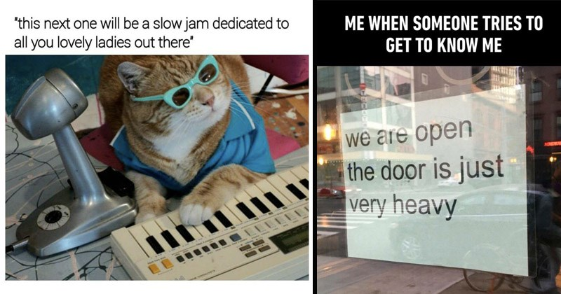 Funny random memes | cool dj cat in sunglasses and a keyboard. this next one will be slow jam dedicated all lovely ladies out there. SOMEONE TRIES GET KNOW are open door is just very heavy