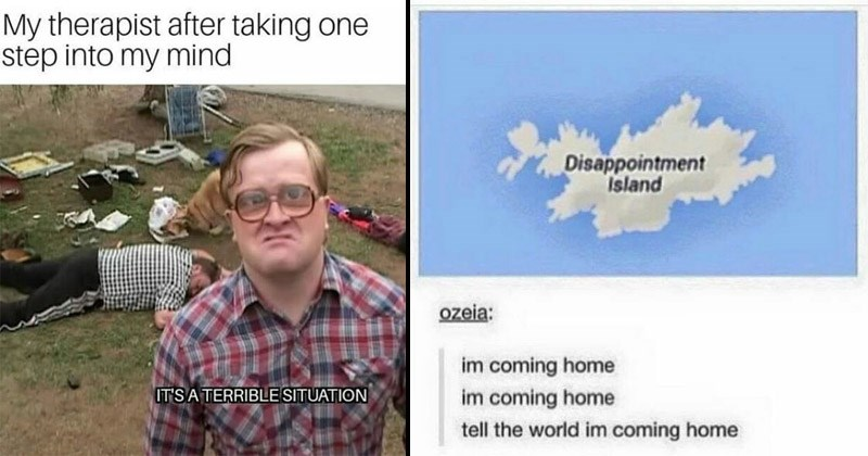 Funny and depressing memes | man looking at camera in front of a hug mess on a lawn including a passed out person. My therapist after taking one step into my mind IT'S A TERRIBLE SITUATION. Disappointment Island ozeia: im coming home im coming home tell world im coming home.