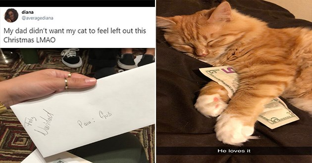 xmas christmas cats gift dog money twitter tweets funny aww cute | tweet by averagediana that reads My dad didn't want my cat feel left out this Christmas LMAO. photo of an envelope addressed to the cat. photo of an orange cat sleeping with a 5 dollar bill.
