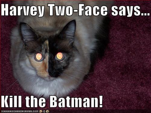 Harvey Two Face Says Kill The Batman Cheezburger Funny Memes