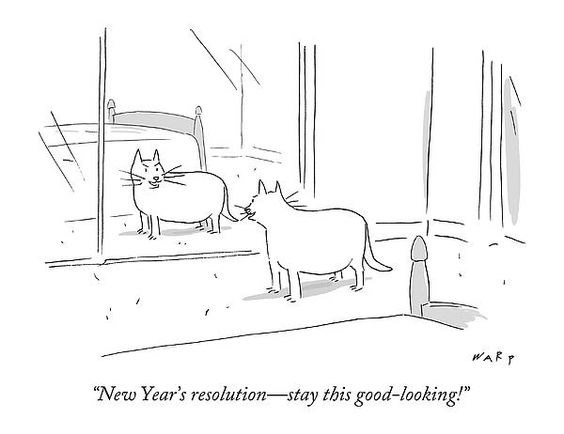 Comics about animal's new resolution's list | illustration of a cat looking at its reflection in the mirror. New Year's resolution-stay this good-looking!