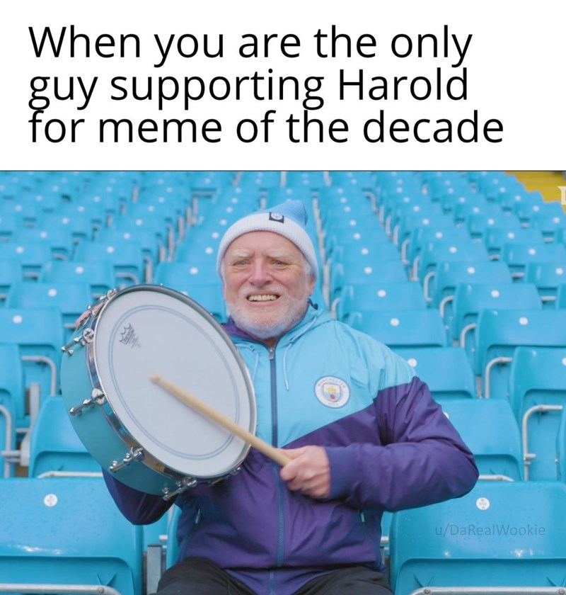The simply best memes to round out the year on a good note and start the next one even better. The cover photo is of a meme supporting the Harold meme for meme of the decade as he is his own cheering section