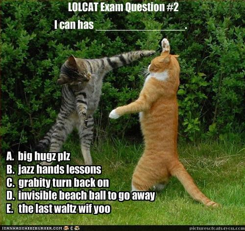 LOLCAT Exam Question #2