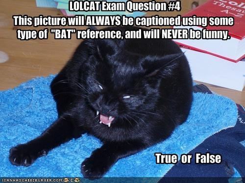 LOLCAT Exam Question #4