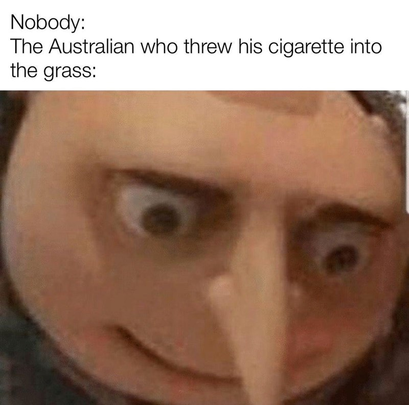 the best memes from all the land brought together to bring you joy. The cover photo is of Gru from Despicable Me as if he was an Australian citizen that threw a lit cigarette in the grass and theoretically starting the swathe of fires