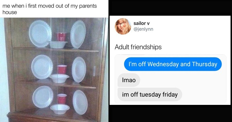 Funny memes and tweets about being an adult, adulting | display filled with paper cups and plates: first moved out my parents house. tweet by jenlynn Adult friendships off Wednesday and Thursday Imao im off tuesday friday