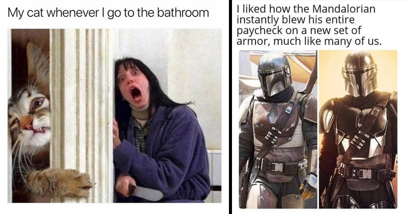 Funny random memes | the shining here's johnny with a cat bursting through the door: My cat whenever go bathroom. pics of the mandalorian in his old and new armor: liked Mandalorian instantly blew his entire paycheck on new set armor, much like many us.