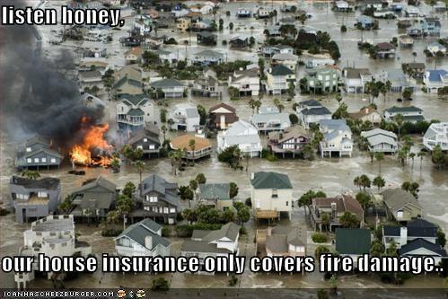 Natural Disasters - 1023500032